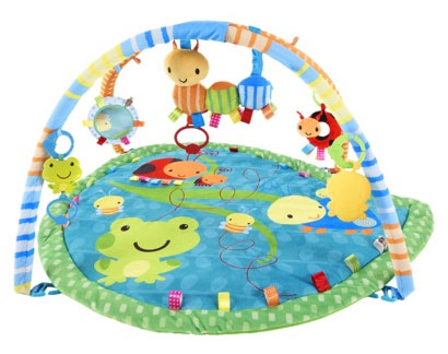 Taggies Bugs and Hugs Playgym from Kids II Baby Play Mat Product Review