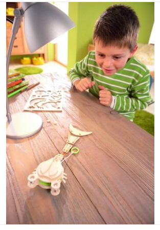 Terra Kids Prehistoric Crab Assembly Kit from HABA Kids Product Review